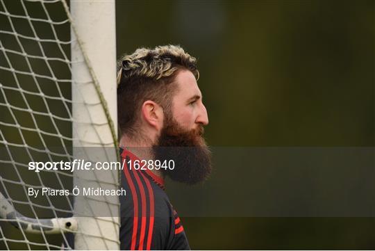 Westmeath v Kildare - Bord na Móna O'Byrne Cup Round 3