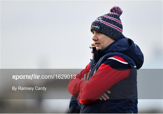 Limerick v Cork - McGrath Cup Semi-final