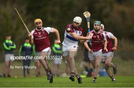 N.U.I. Galway V University of Limerick - Electric Ireland Fitzgibbon Cup Group A Round 2