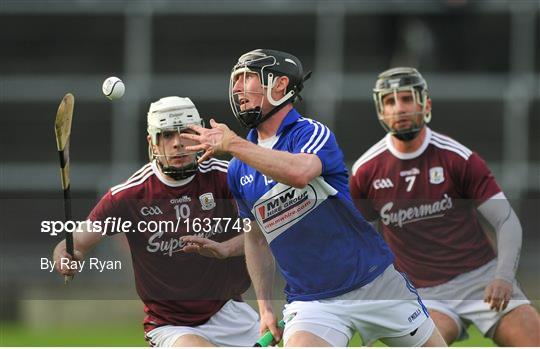 Galway v Laois - Allianz Hurling League Division 1B Round 1
