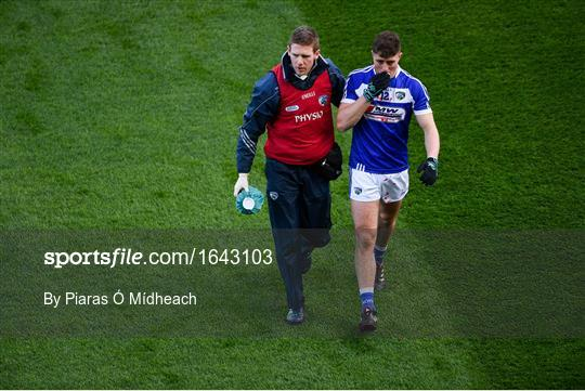 Laois v Louth - Allianz Football League Division 3 Round 2