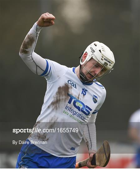 Dublin v Waterford - Allianz Hurling League Division 1B Round 4