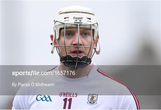 Wexford v Galway - Bord na Móna Walsh Cup Final