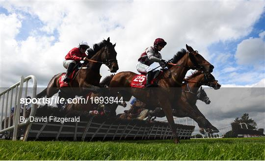 Punchestown Festival - Gold Cup Day