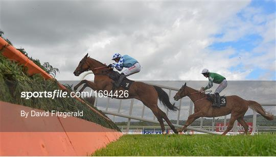 Punchestown Festival - Champion Stayers Hurdle Day