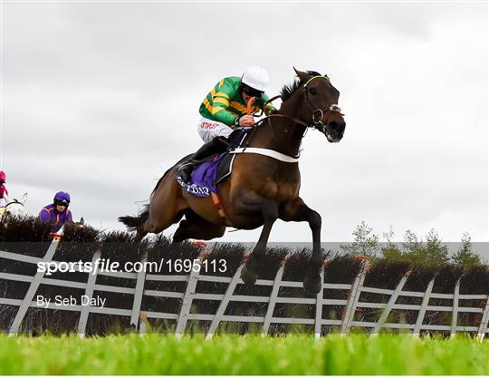Punchestown Festival - Champion Hurdle Day