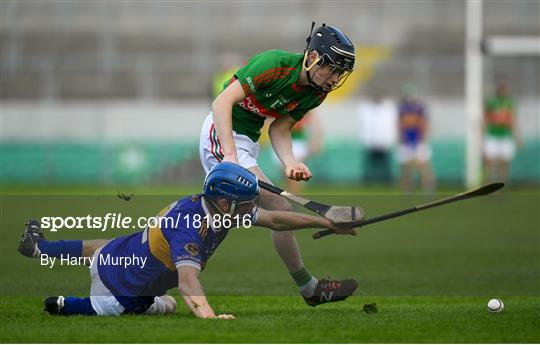 Birr v St Rynaghs - Offaly County Senior Club Hurling Championship Final