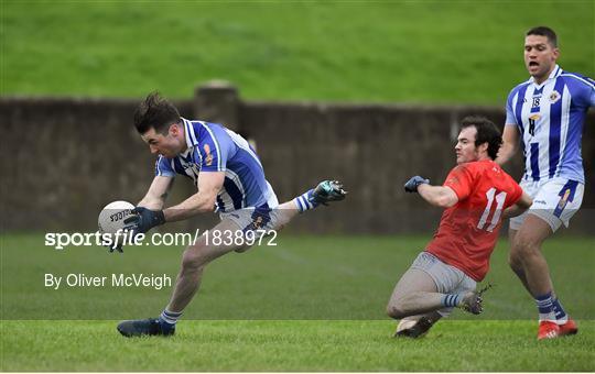 Newtown Blues v Ballyboden St Enda's - AIB Leinster GAA Football Senior Club Championship Quarter-Final