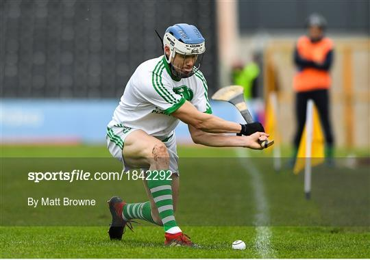 Ballyhale Shamrocks v St Martin's - AIB Leinster GAA Hurling Senior Club Championship semi-final