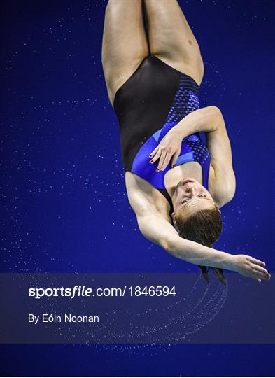 2019 Irish Open Diving Championships
