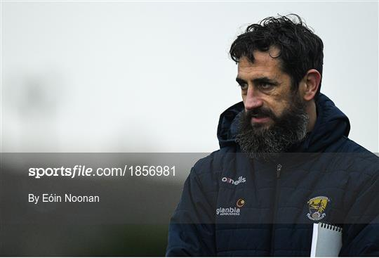 Wexford v Laois - 2020 O'Byrne Cup Round 2