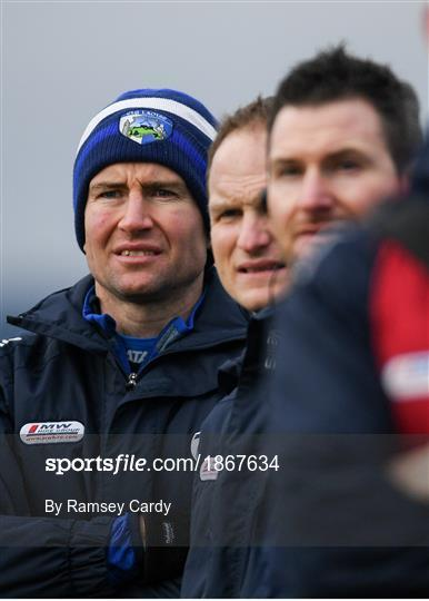 Laois v Westmeath - 2020 Walsh Cup Round 1