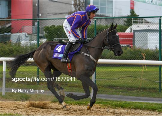 Dublin Racing Festival - Day Two