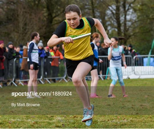 Irish Life Health National Intermediate, Master, Juvenile B & Relays Cross Country