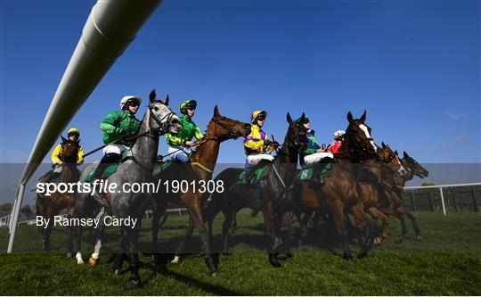 Horse Racing from Downpatrick