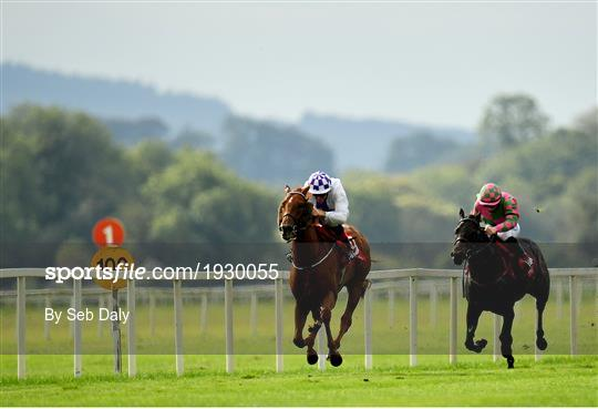 Horse Racing from Cork