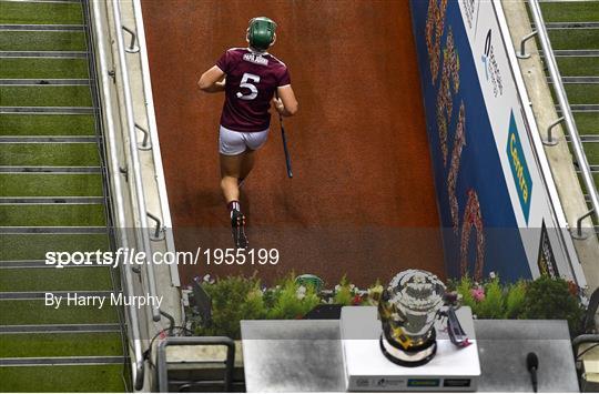 Kilkenny v Galway - Leinster GAA Hurling Senior Championship Final