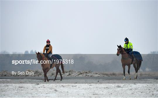 Horses on The Curragh