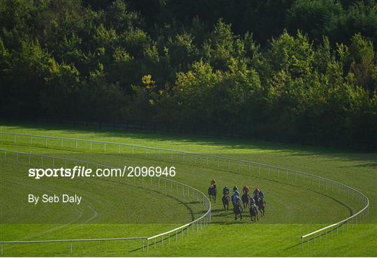 Horse Racing from Limerick