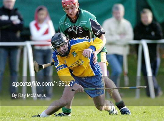 All-Ireland Hurling Sevens 2004