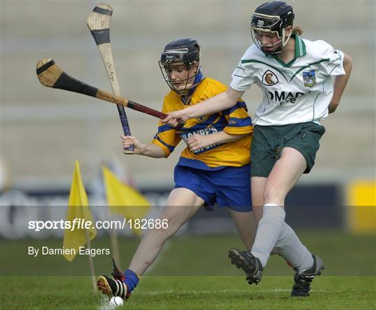 Limerick v Clare Camogie