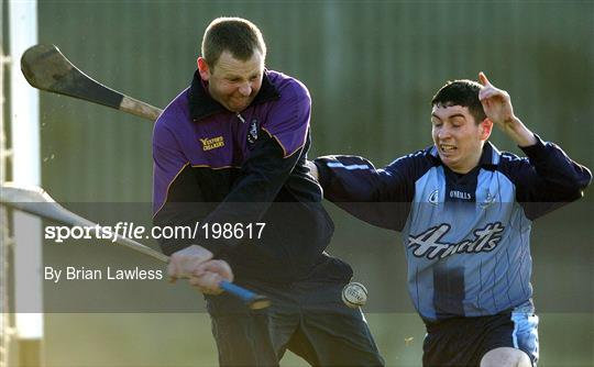 Dublin v Wexford - Walsh Cup