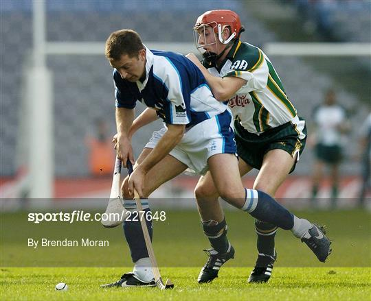Ireland v Scotland - Senior Men's Hurling Shinty International