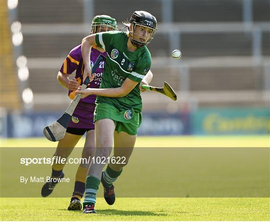 Wexford v Limerick - Liberty Insurance Camogie Championship