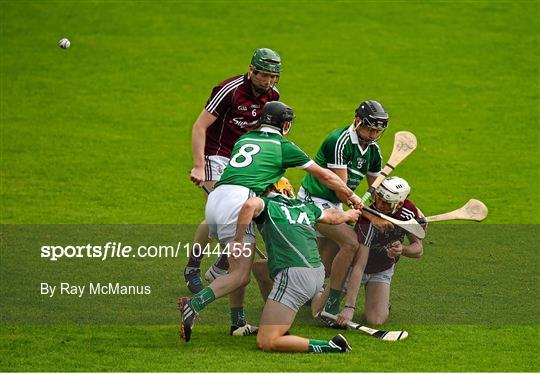 limerick team mates finally end - 540×374