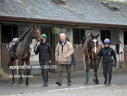 12a381a65171 Sportsfile - Willie Mullins Stable Visit - 384295