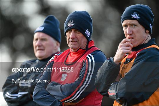 Cork v Roscommon - Allianz Football League Division 1 Round 3