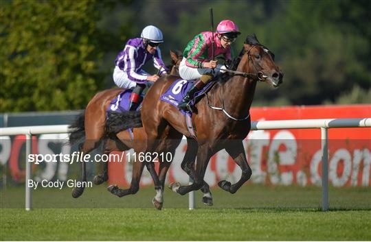British Irish Chamber of Commerce Raceday