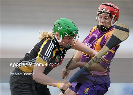 Kilkenny v Wexford - Gala All-Ireland Senior Camogie Championship Semi-Final