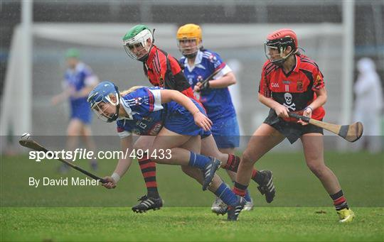University College Cork v Waterford IT - Ashbourne Cup Final