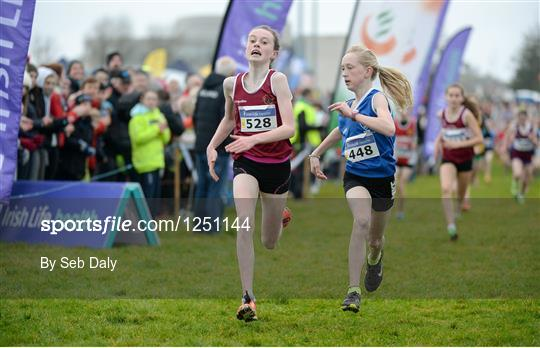 Irish Life Health Novice & Juvenile Uneven Age National Cross Country Championships