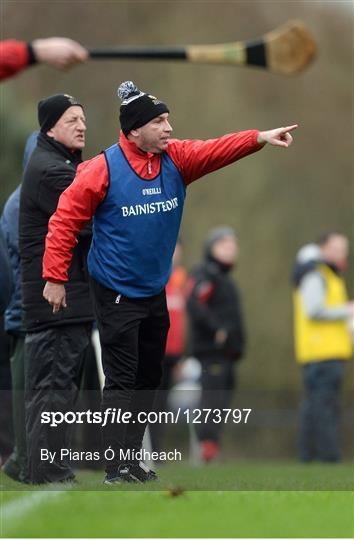 IT Carlow v University College Cork - Independent.ie HE GAA Fitzgibbon Cup semi-final