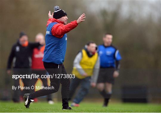 IT Carlow v University College Cork - Independent.ie HE GAA Fitzgibbon Cup semi-final