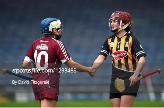 Galway v Kilkenny - Littlewoods National Camogie League semi-final