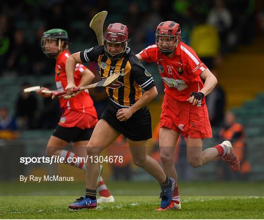 Cork v Kilkenny Littlewoods Ireland Camogie League Div 1 Final