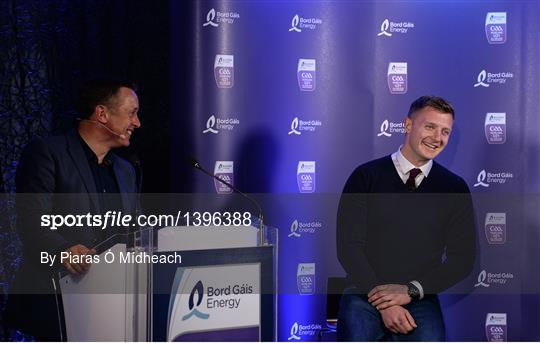 Bord Gáis Energy U-21 Hurling Team of the Year