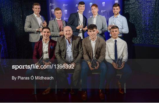 Bord Gáis Energy U-21 Hurling Team of the Year